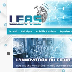 LEAS website and logo