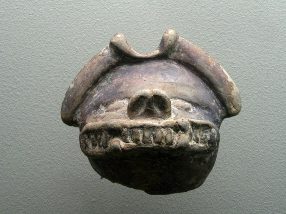 Chauve-souris Tayrona (400 - 1500) nord de la côte caraïbe