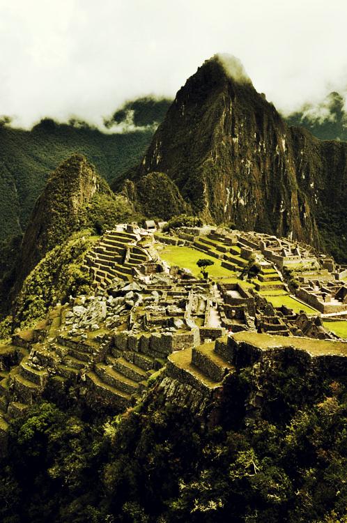 Machu Picchu et terrasses