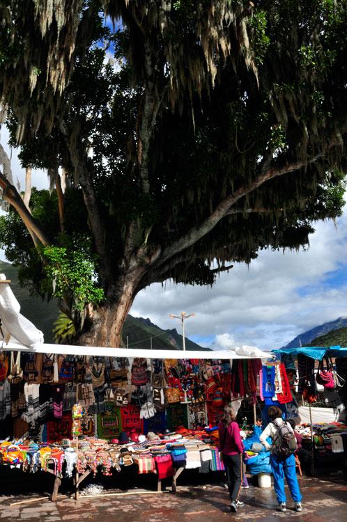 Pisac, marché d'artisanat organisé autour d'un arbre