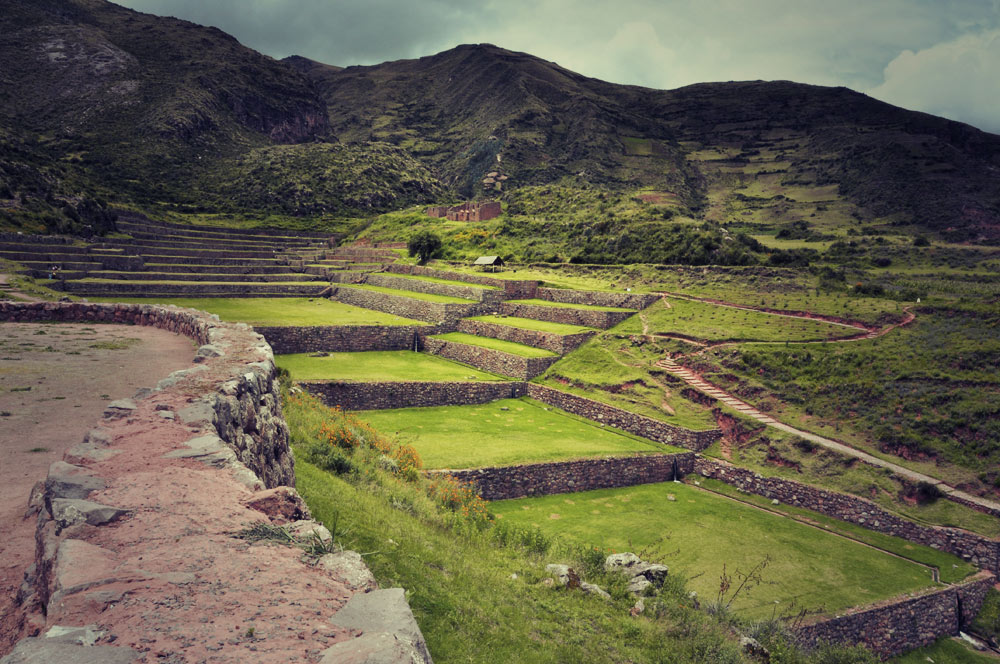 Vue d'ensemble du site (les terrasses)
