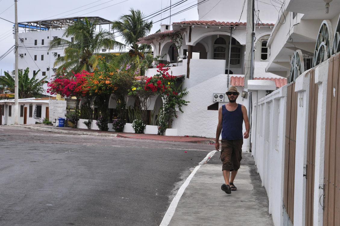Santa Cruz, la frime à Puerto Ayora