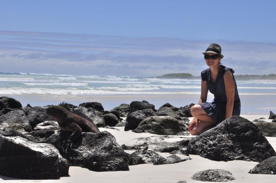 Santa Cruz, Tortuga Bay, iguane marin (à gauche!)