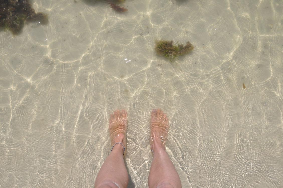 Santa Cruz, seule à Tortuga Bay