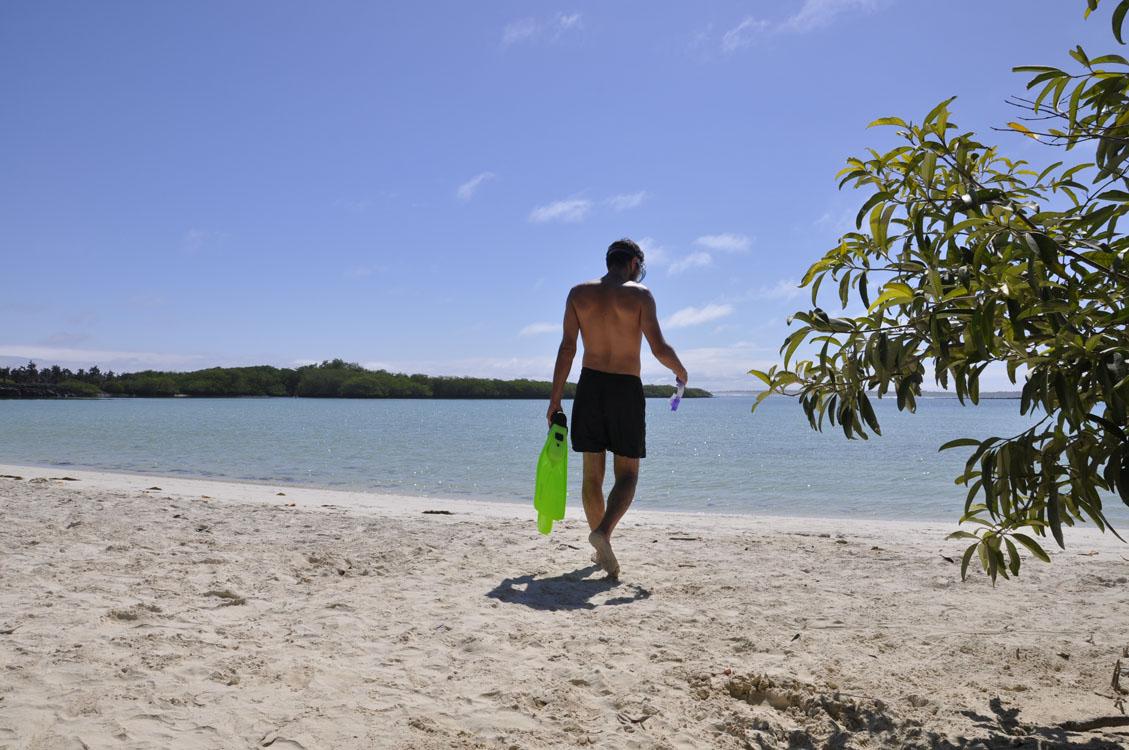 Santa Cruz, Tortuga Bay, une plage qui invite au snorkling