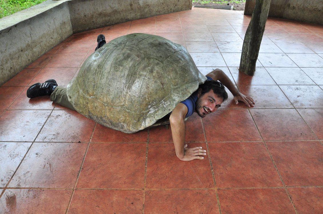 Santa Cruz, dans la peau d'une tortue