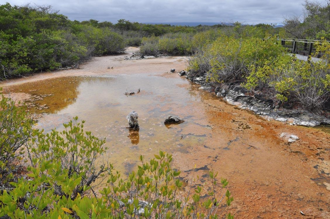 La lagune de Villamil