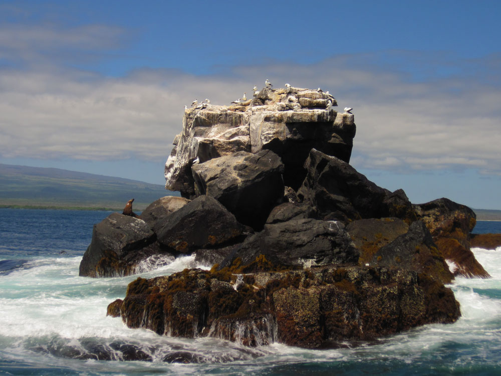 Un (joli) rocher au milieu de l'océan