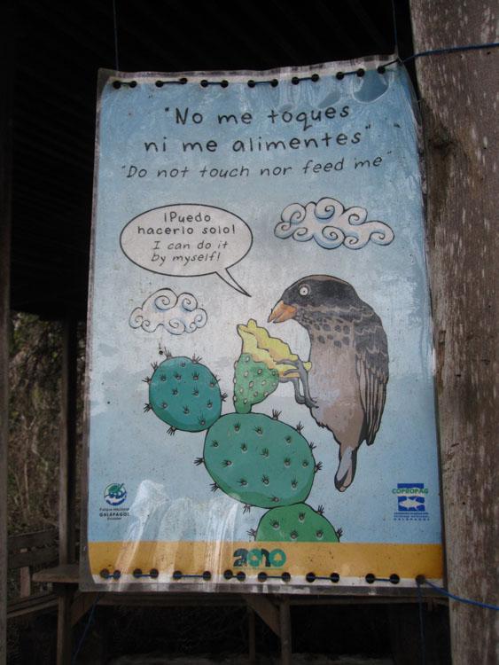 "Santa Cruz, Puerto Ayora, centre Darwin, ""ne pas me toucher, ni me donner à manger"""
