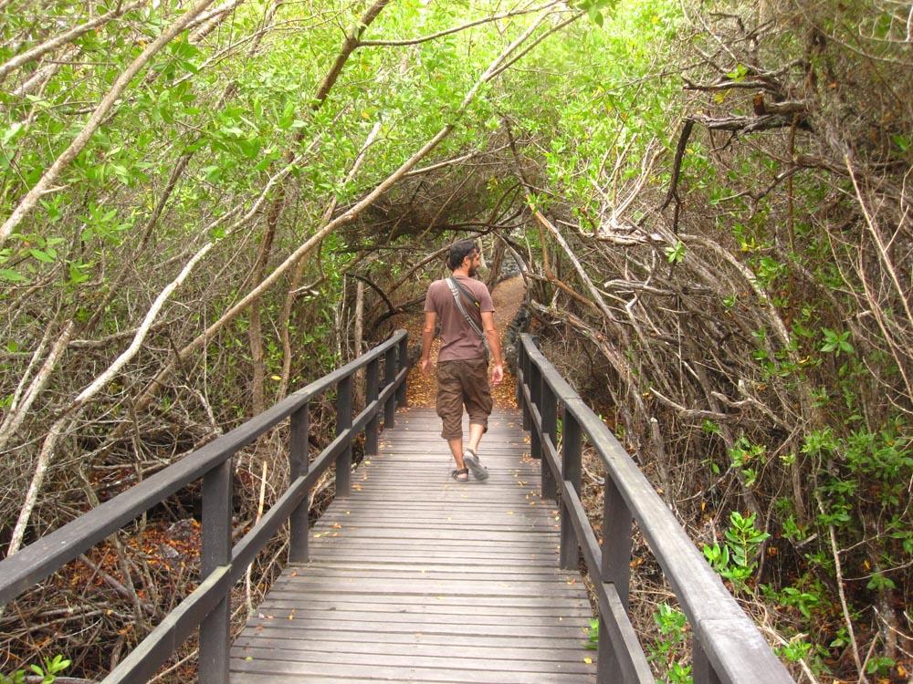 En route vers la lagune de Villamil