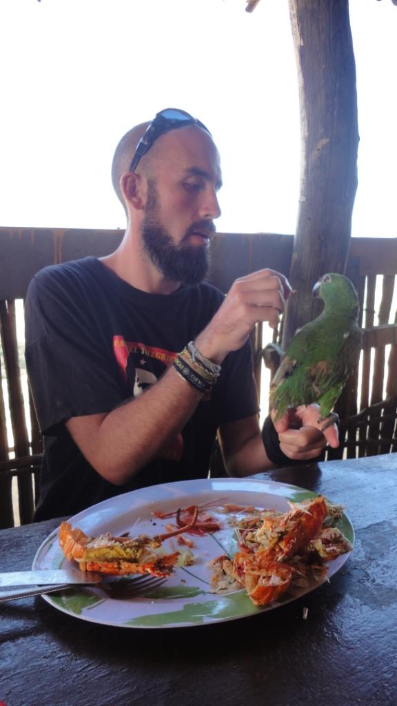 Punta Gallinas, la langouste, le plat préféré du perroquet