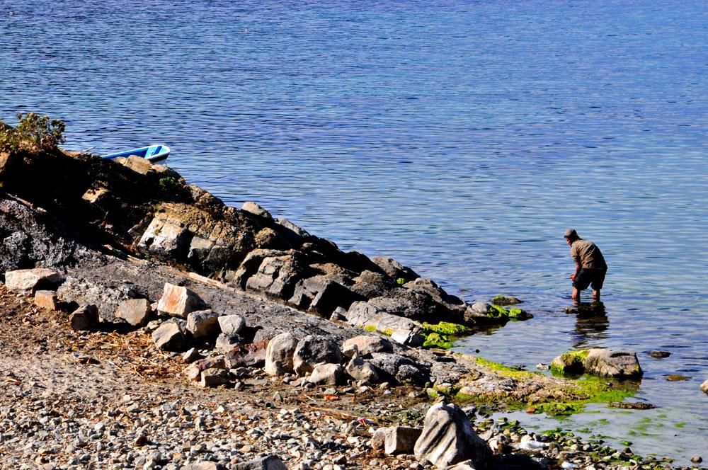 Isla del Sol, la pêche aux moules ?