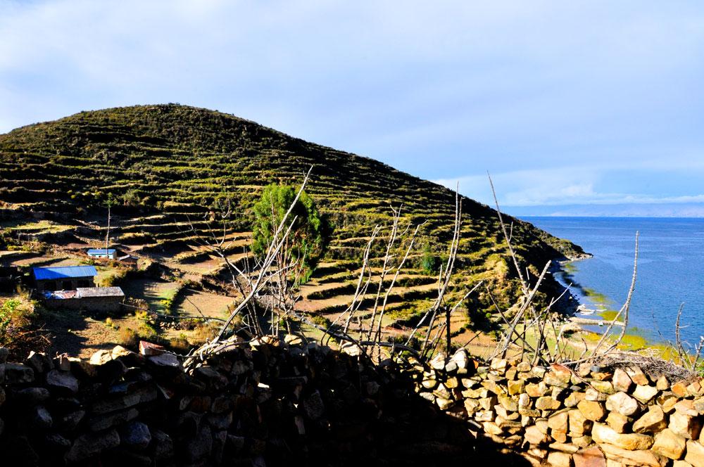 Isla del Sol, culture en terrasse