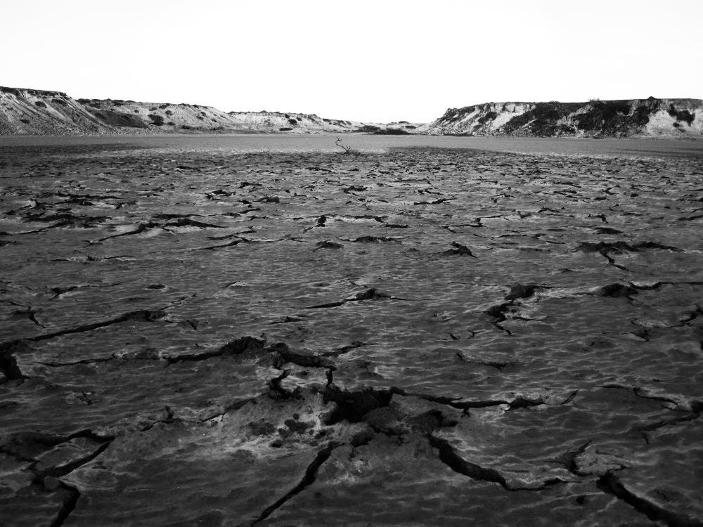 Punta gallina, janvier 2012