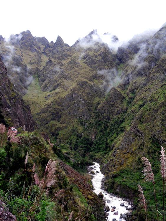 Dans la vallée côté jungle