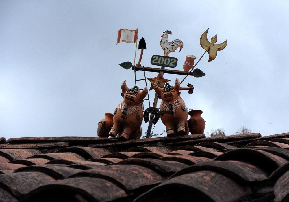 Taureaux sur un toit