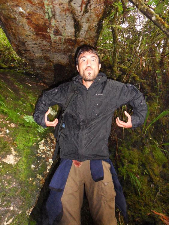 Machu Picchu, le singe-hurleur