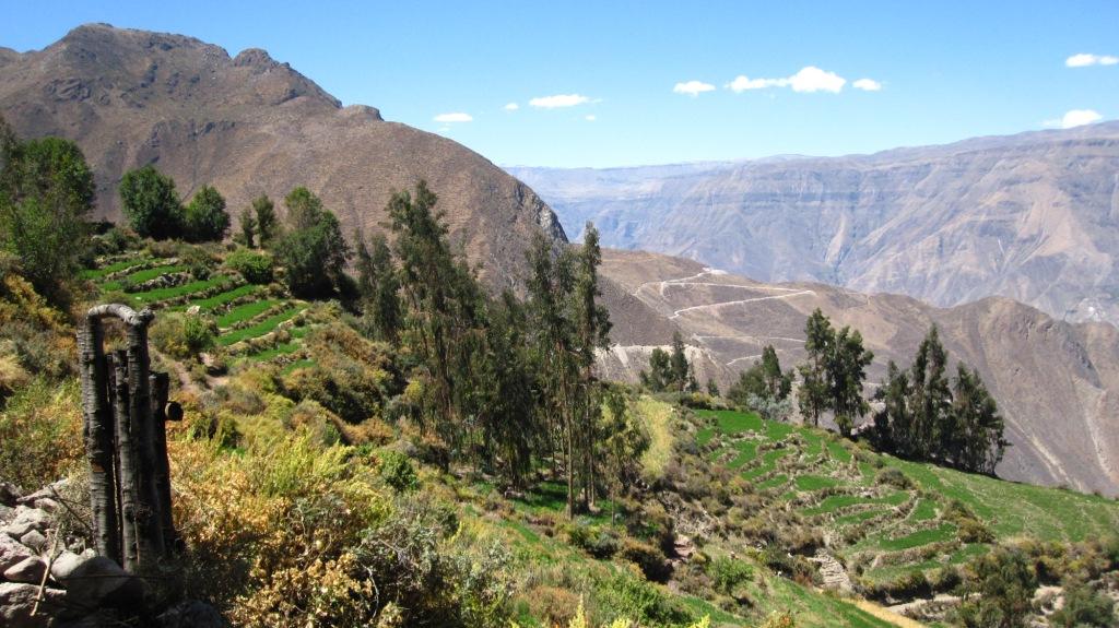 Charcana, on attaque la descente vers Velinga